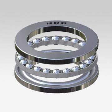 NJ 206 ECP Open Single-Row Cylindrical Roller Bearing 30*62*16mm